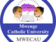 Mwenge Catholic University MWECAU